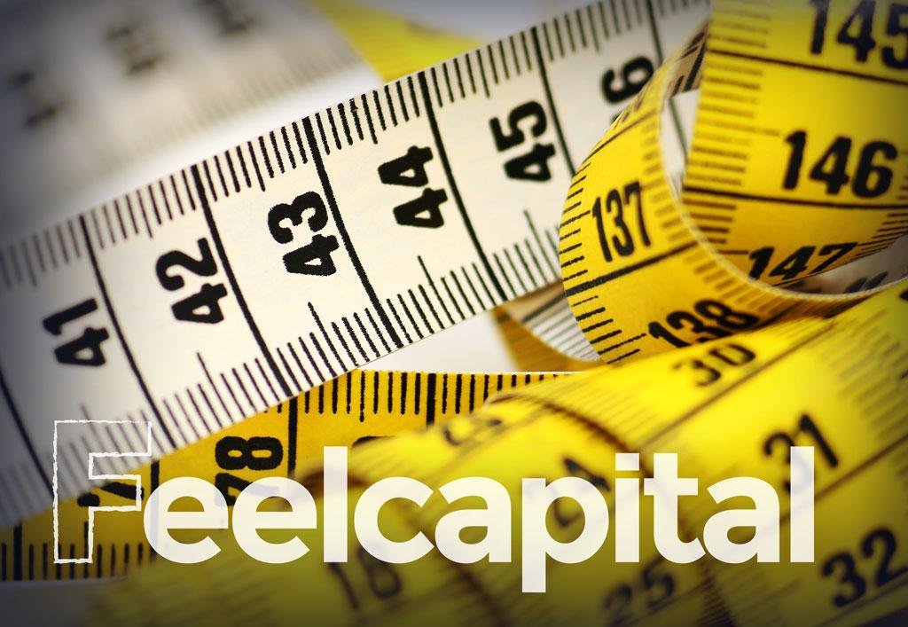 Feelcapital-metricas